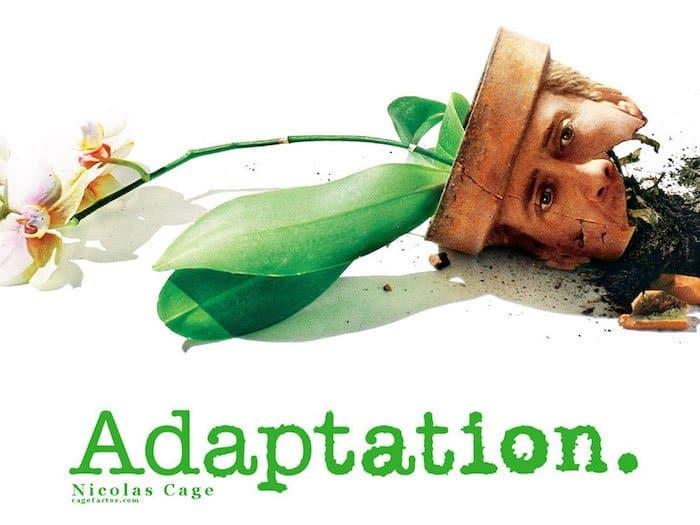 Adaptation Film