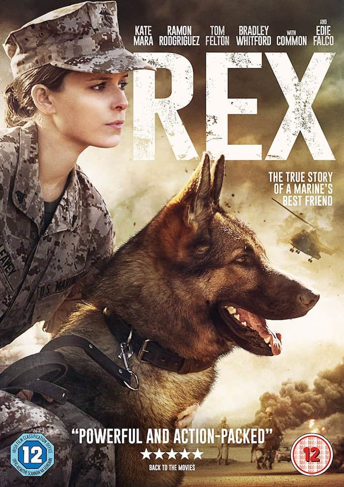 REX Movie review