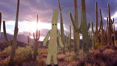Cactus Boy Kickstarter